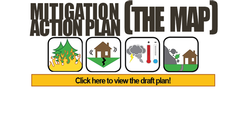 Mitigation Action Plan