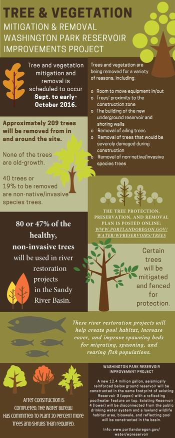 Tree Mitigation & Removal