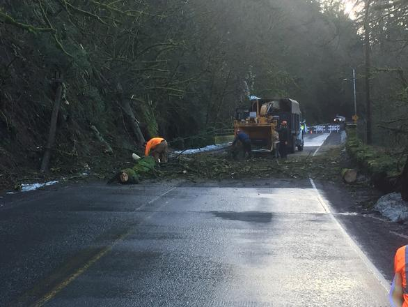Crews clear trees from NW Cornell Rd