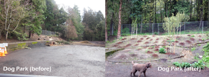 Mt. Tabor Dog Park Improvements