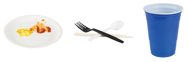 single use plate, flatware and cup