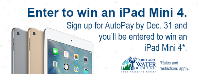 Enter to win an iPad Mini 4.