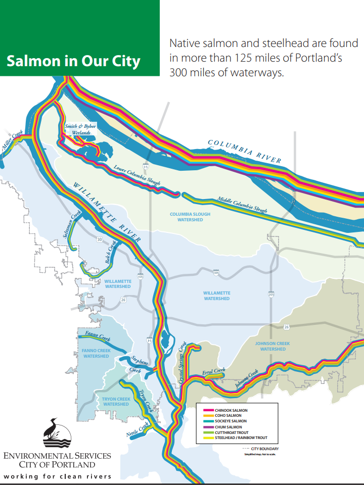 Salmon in Our City Map