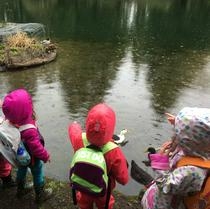 Looking at the ducks at Laurelhurst Park