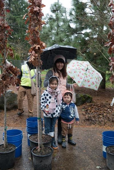 Trees for all-even the little peeps at the Hazelwood Hydro-park!