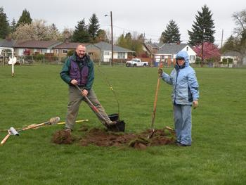 Concordia Tree Team plants trees in 2010.