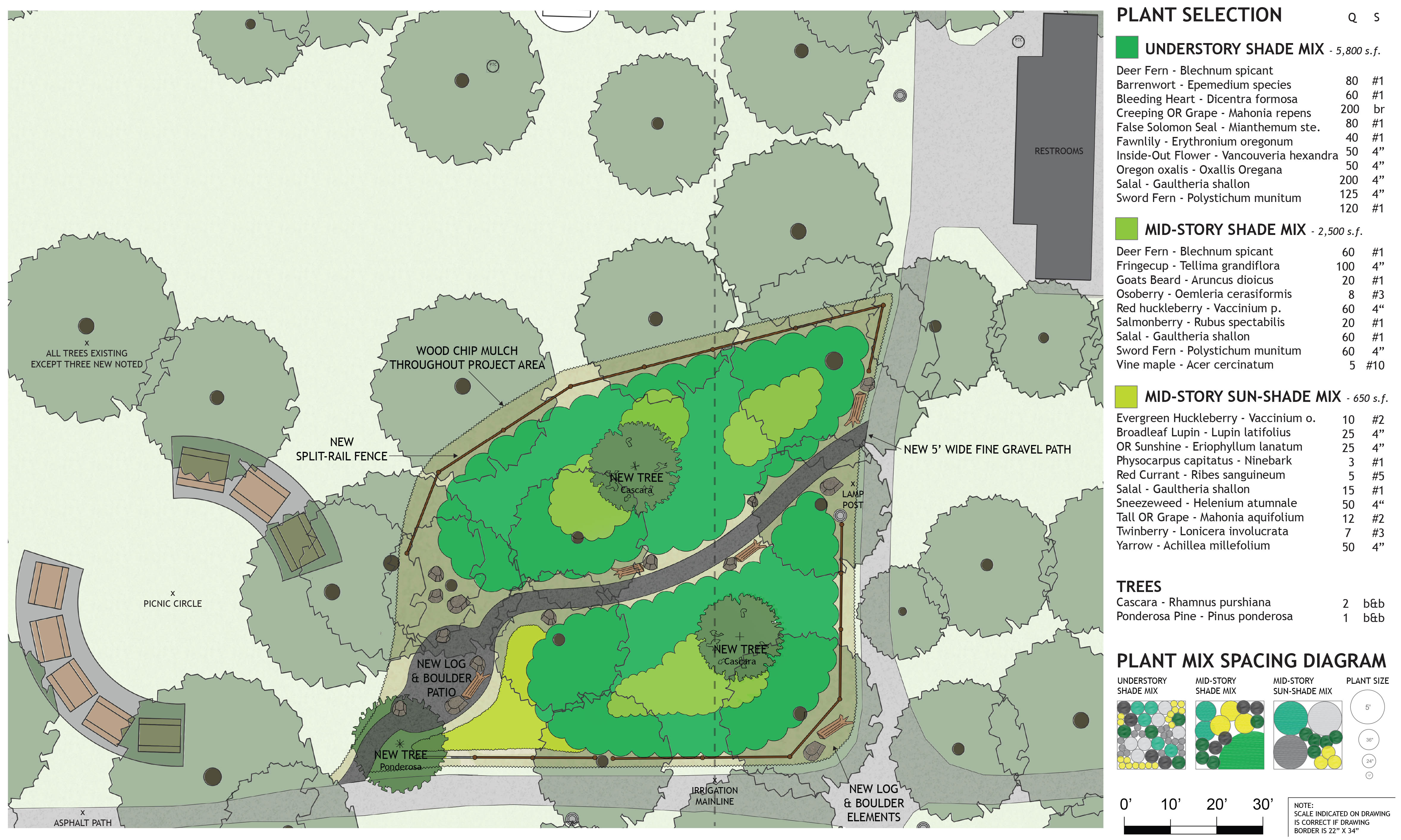 Wilshire Nature Patch Plan & Plants
