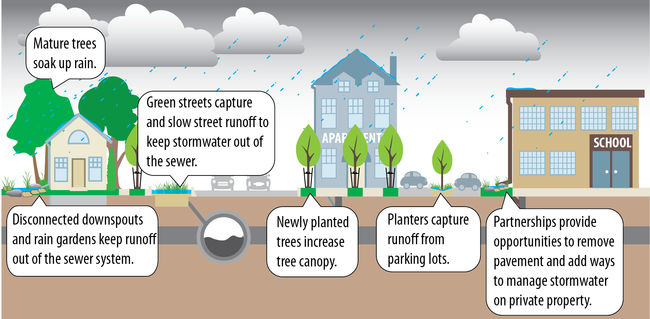 Graphic showing neighborhood street with green infrastructure
