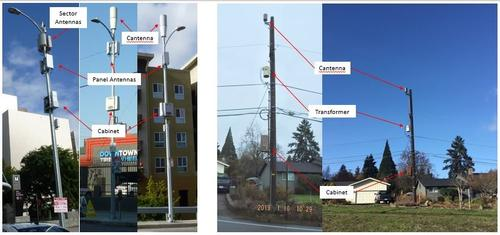 Picture of small cell examples