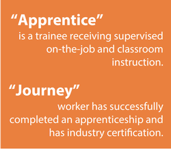 Definition of apprentice: a trainee receiving supervised on-the-job and classroom instruction. Definition of journey worker: successfully completed an apprenticeship and has industry certification.