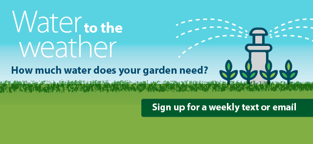 Get Weekly Watering Tips Customized For Your Lawn And Garden