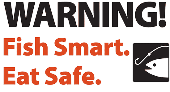 Graphic says Fish Smart. Eat Safe.