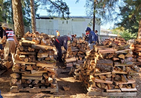Picture of people chopping and stacking wood