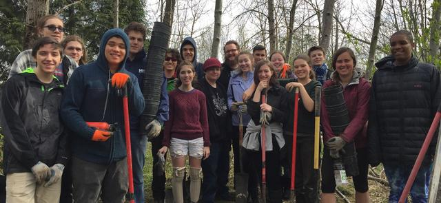 Plant a tree or two or three volunteers from trillium high school
