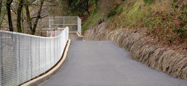 Waud Bluff trail